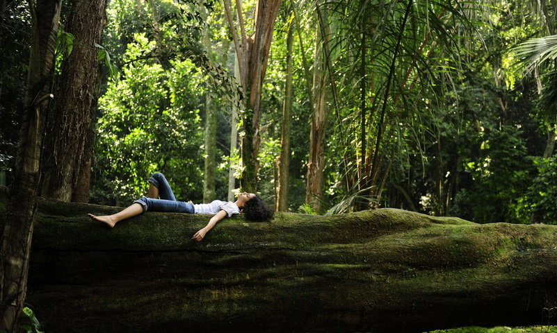 forest bathing indonesia