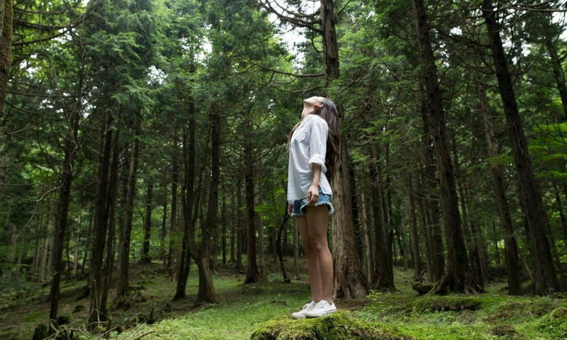forest bathing di indonesia