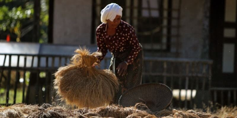 suku pedalaman kasepuhan banten kidul kampung ciptagelar